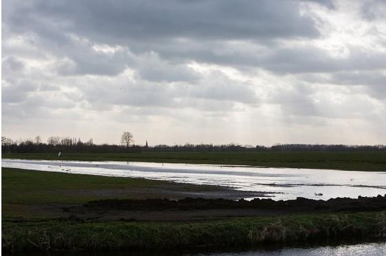 1 hectare plas dras